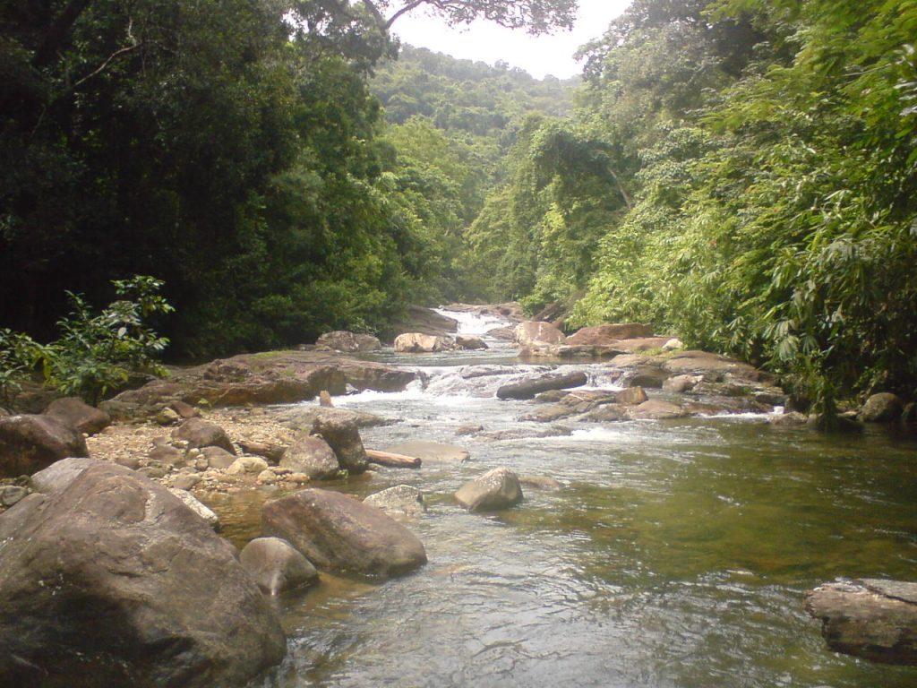 Meenmutty_Water streams ponmudi