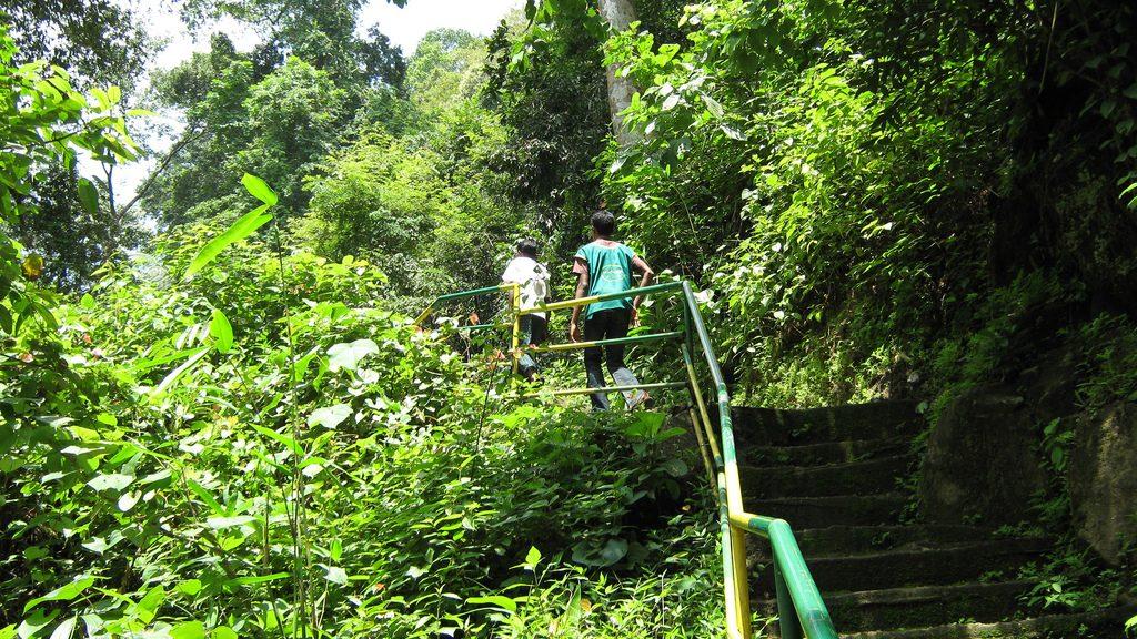 Trivandrum spice garden tour