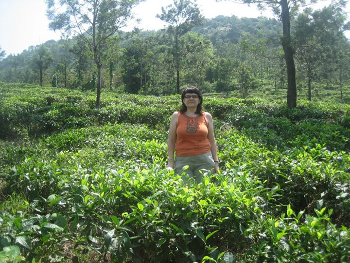 Trivandrum to tea plantations