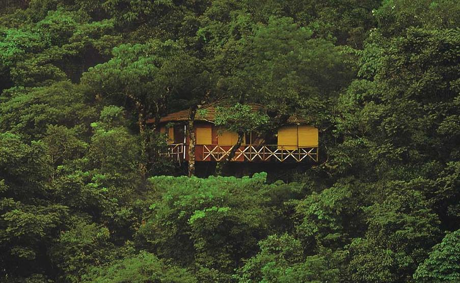 Looking to stay in a Tree house in Kerala