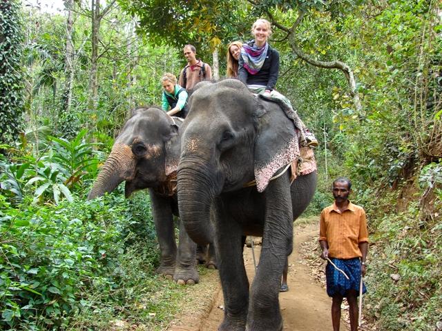 elephant ride kovalam, elephant ride kerala