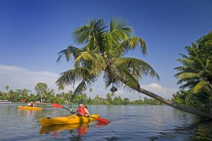 kayaking day tour kochi