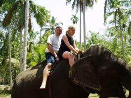 Elephant Ride Kovalam Day Tour