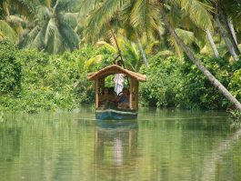poovar backwater cruise