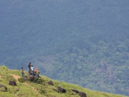 kovalam day tour to ponmudi hillstation